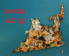needs-wings